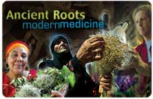 "Icon for ""Ancient Roots Modern Medicine Series"""