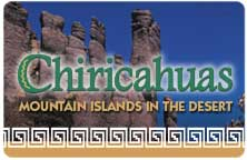 "Icon for ""Chiricahuas"" produced by NMSU Media Productions"