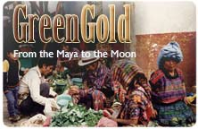 "Icon for ""Green Gold: From the Maya to the Moon"" produced by NMSU Media Productions"